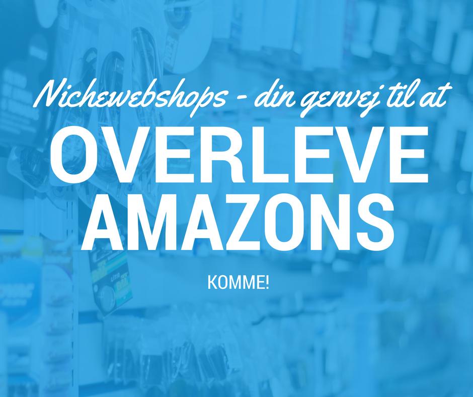 Nichewebshops – din genvej til at overleve Amazons komme